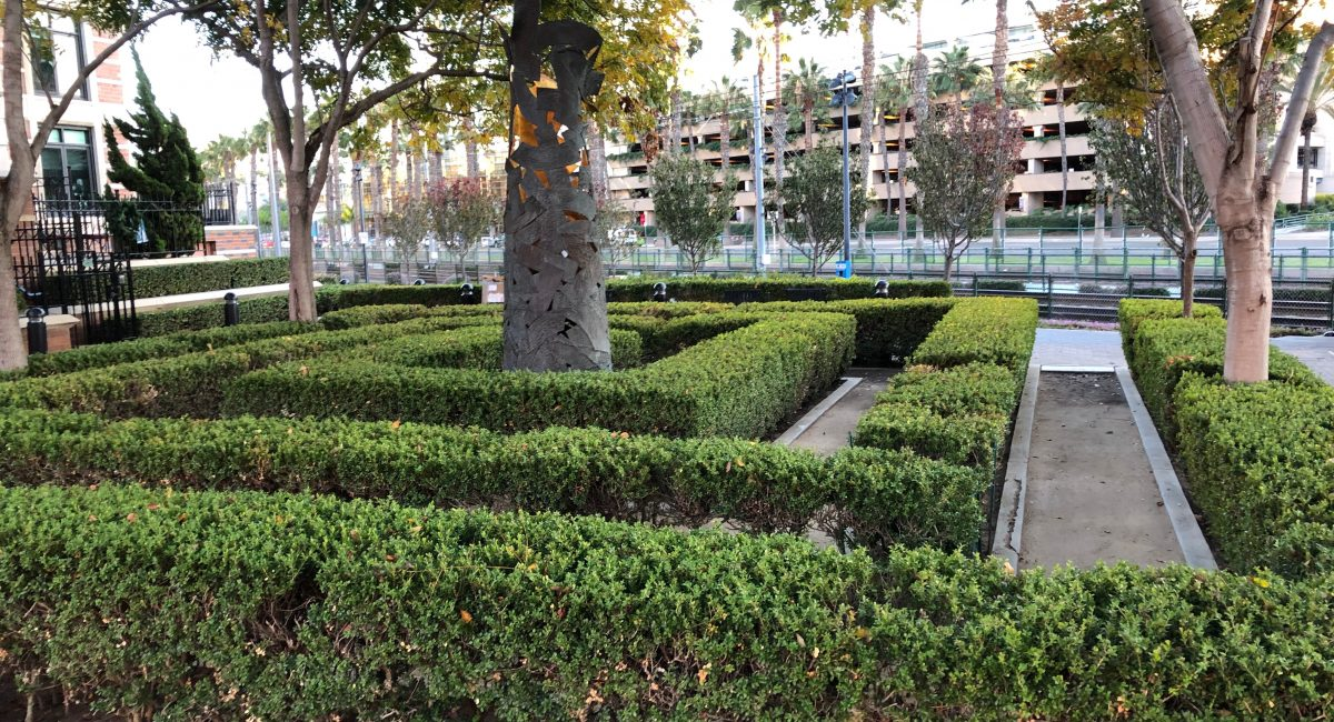 Mini-Hedge Maze